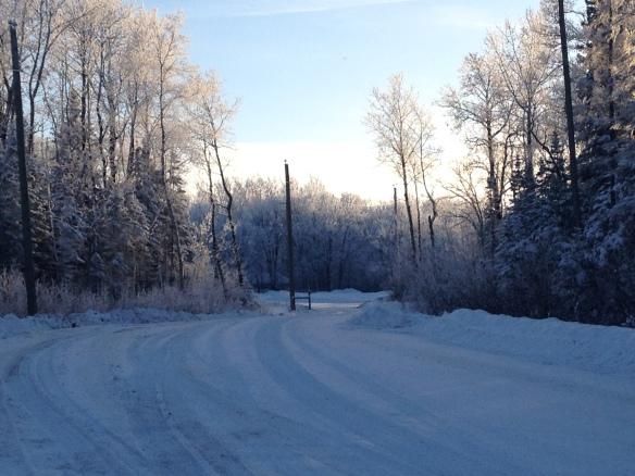 Winter Wonderland - Photo by Leah Schroeder