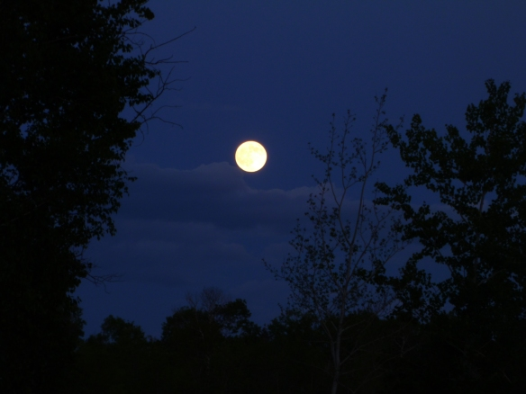 June 13th Full Moon - Photo by Leah Schroeder